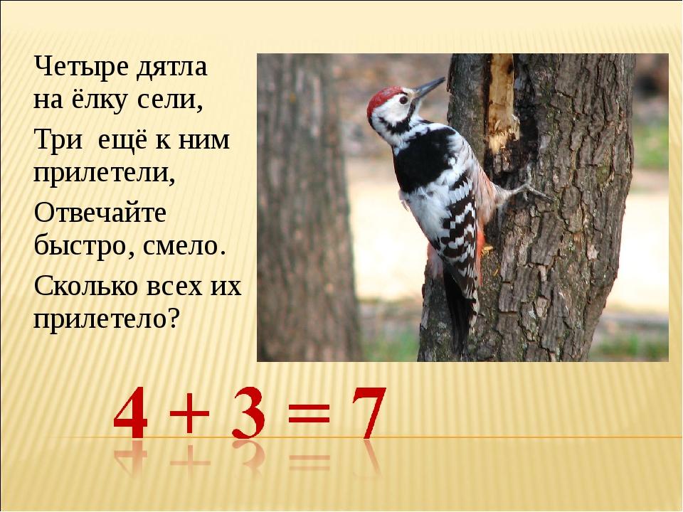 Четыре дятла на ёлку сели, Три ещё к ним прилетели, Отвечайте быстро, смело....