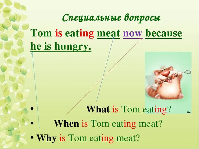 Специальные вопросы Tom is eating meat now because he is hungry. What is Tom...