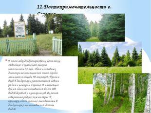 В этом году дендропарковому комплексу «Явлейка» Сергачского лесхоза исполнило
