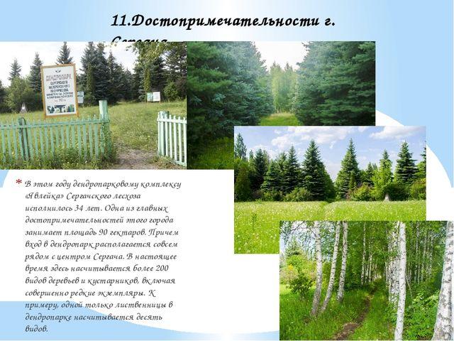 В этом году дендропарковому комплексу «Явлейка» Сергачского лесхоза исполнило...