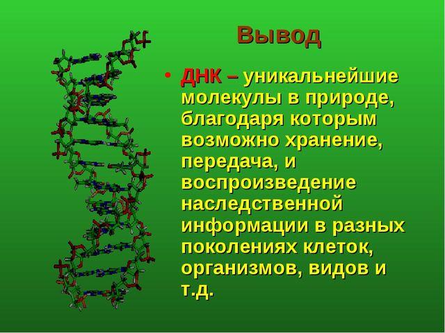 Вывод ДНК – уникальнейшие молекулы в природе, благодаря которым возможно хран...