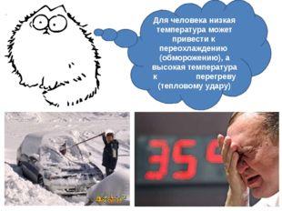Для человека низкая температура может привести к переохлаждению (обморожению)