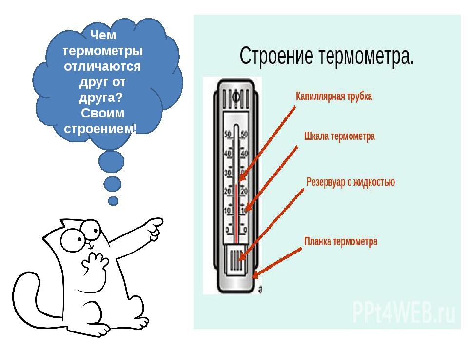 Чем термометры отличаются друг от друга? Своим строением!