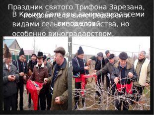 В Крыму Болгары занимались всеми видами сельского хозяйства, но особенно вино