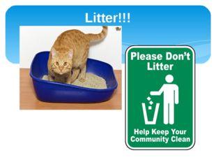 Litter!!!