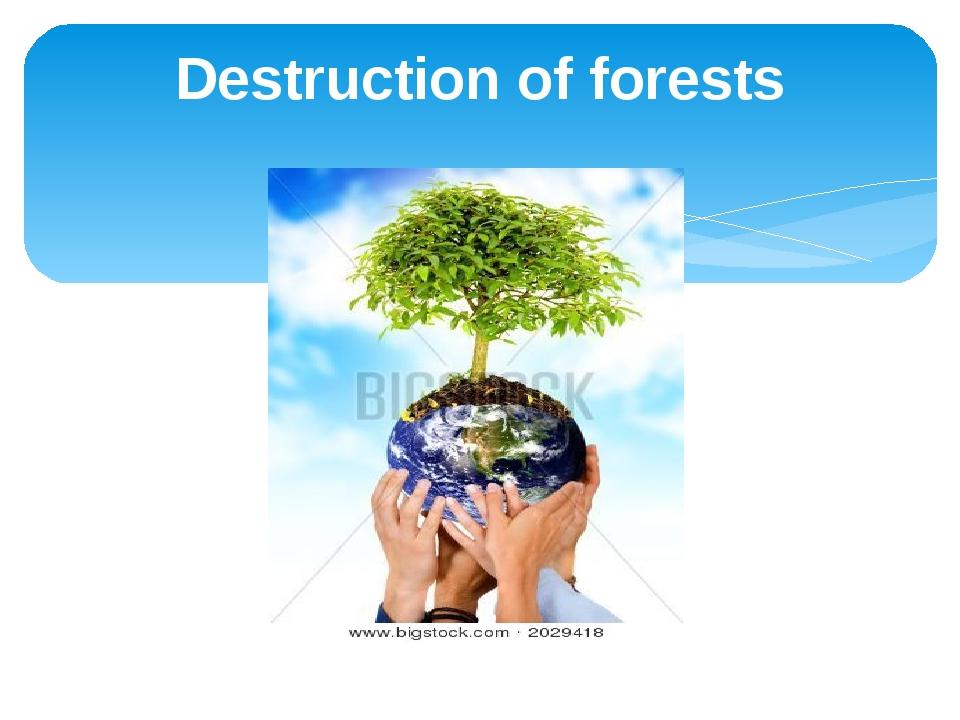 Destruction of forests