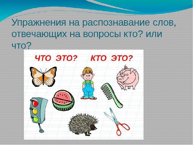 Упражнения на распознавание слов, отвечающих на вопросы кто? или что?
