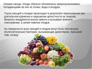 Свежие овощи, плоды обильно обсеменены микроорганизмами, попадающими на них и