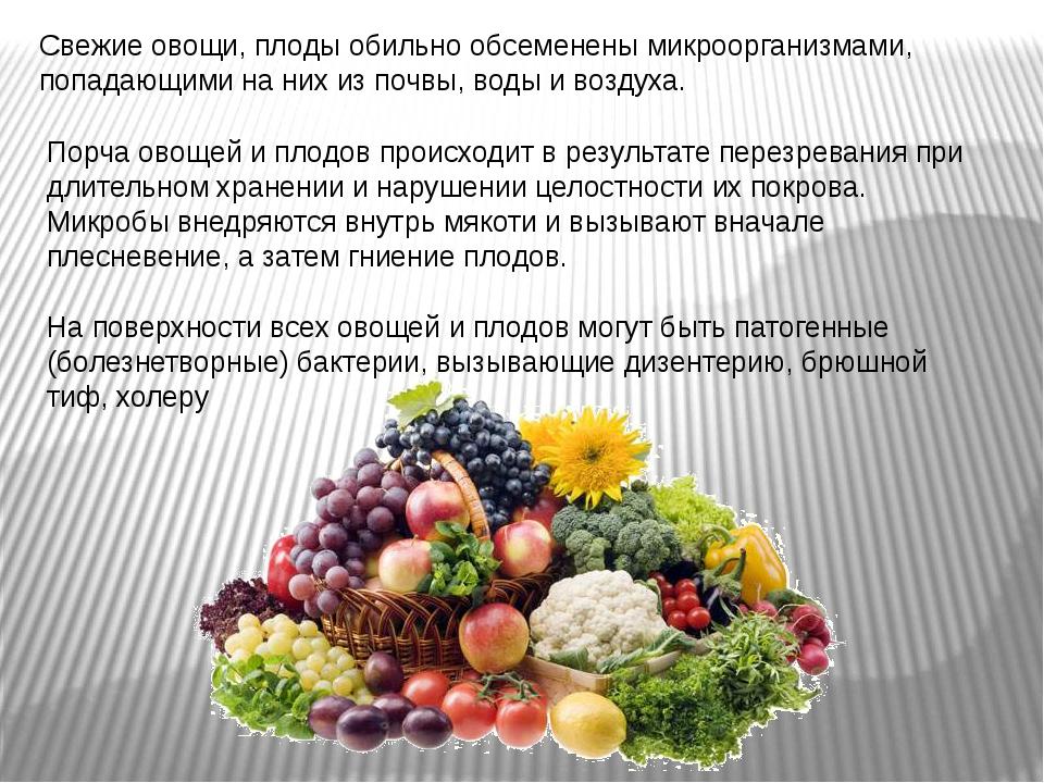 Свежие овощи, плоды обильно обсеменены микроорганизмами, попадающими на них и...