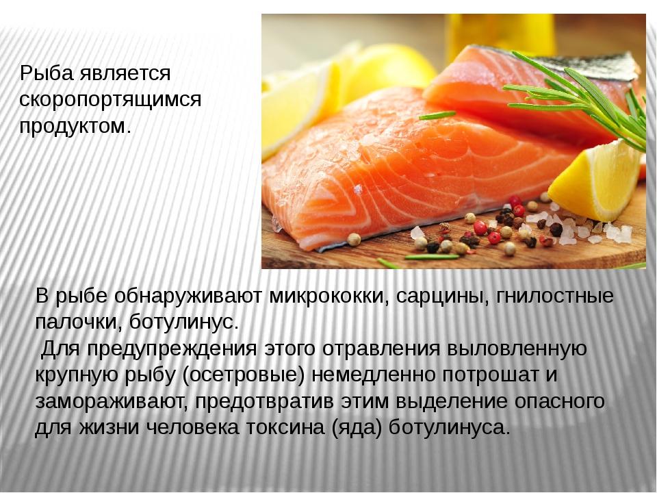 Рыба является скоропортящимся продуктом. В рыбе обнаруживают микрококки, сарц...