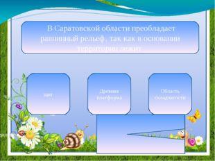 В Правобережье выделяются такие формы рельефа , как Окско –Донская равнина, П