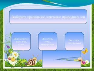 В почвенном покрове преобладают Черноземы и солонцы Серые лесные и черноземны