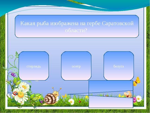 Какая рыба изображена на гербе Саратовской области? стерлядь осетр белуга в н...