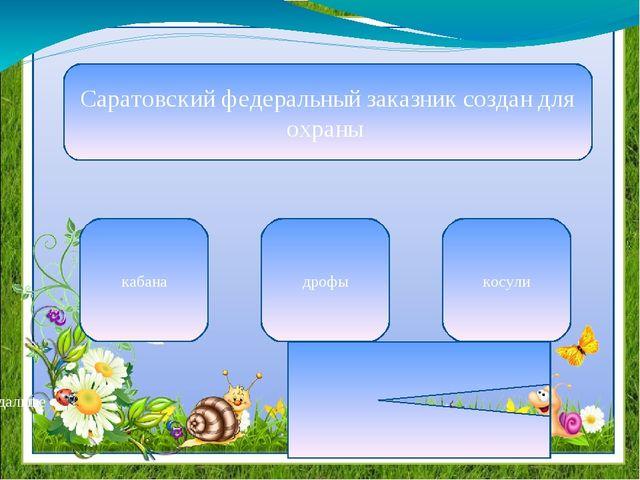 Саратовский федеральный заказник создан для охраны кабана дрофы косули дальше