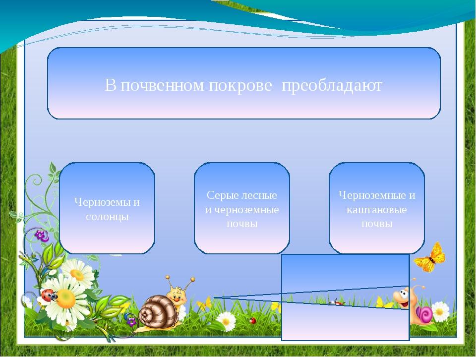 Город Вольск славится добычей цемента газа щебня в начало