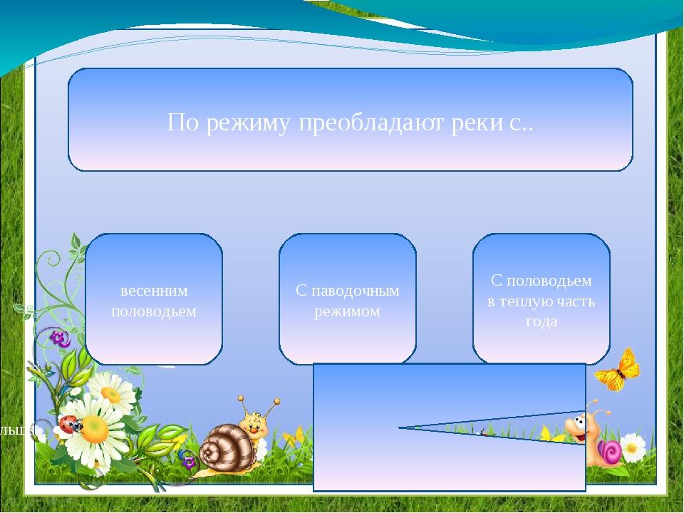По режиму преобладают реки с.. весенним половодьем С паводочным режимом С пол...