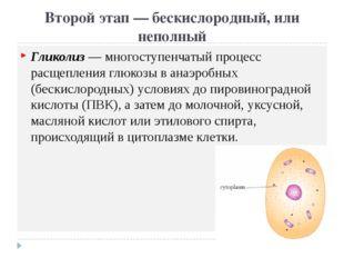 Второй этап — бескислородный, или неполный Гликолиз — многоступенчатый процес