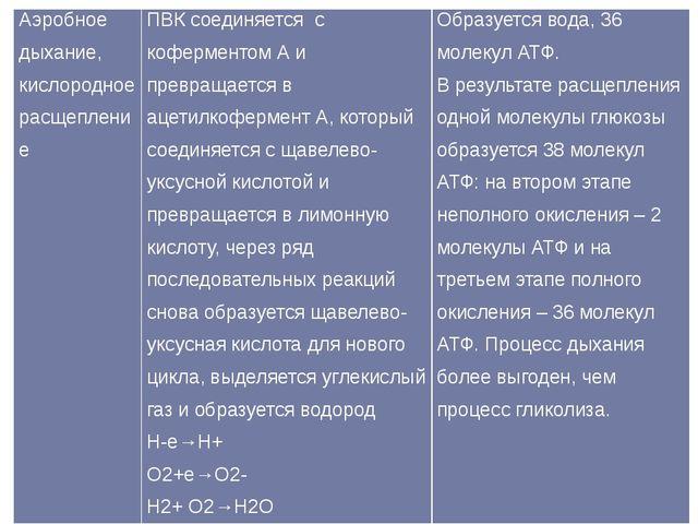 Аэробное дыхание, кислородное расщепление ПВК соединяется с коферментом А и п...