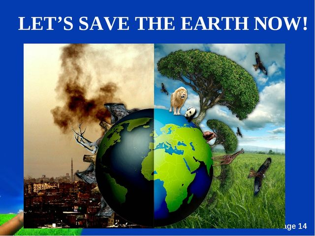 essay on biotechnology to save mother earth