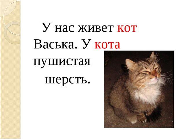 У нас живет кот Васька. У кота пушистая шерсть.