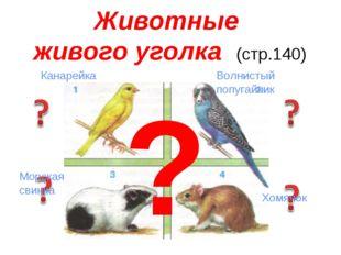 Животные живого уголка (стр.140) ? Волнистый попугайчик Канарейка Морская с