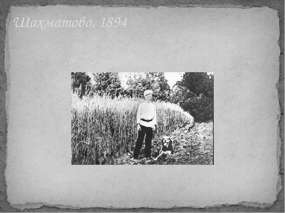 Шахматово, 1894