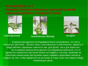 Исследование № 3. Наличие опасных комнатных растений в нашей классной комнате