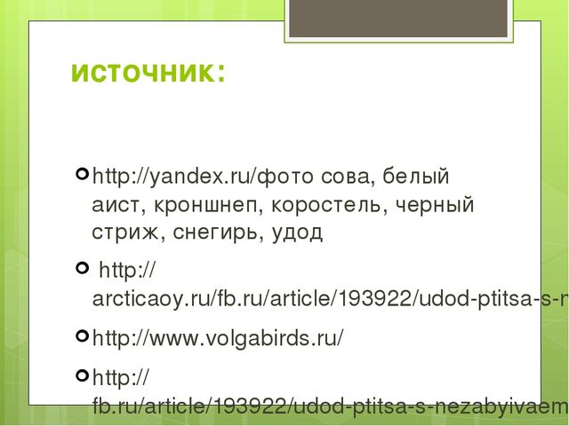 источник: http://yandex.ru/фото сова, белый аист, кроншнеп, коростель, черный...