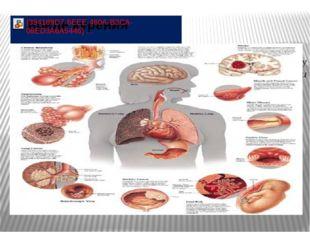 Курение может нанести вред практически каждому органу вашего тела, от макушки