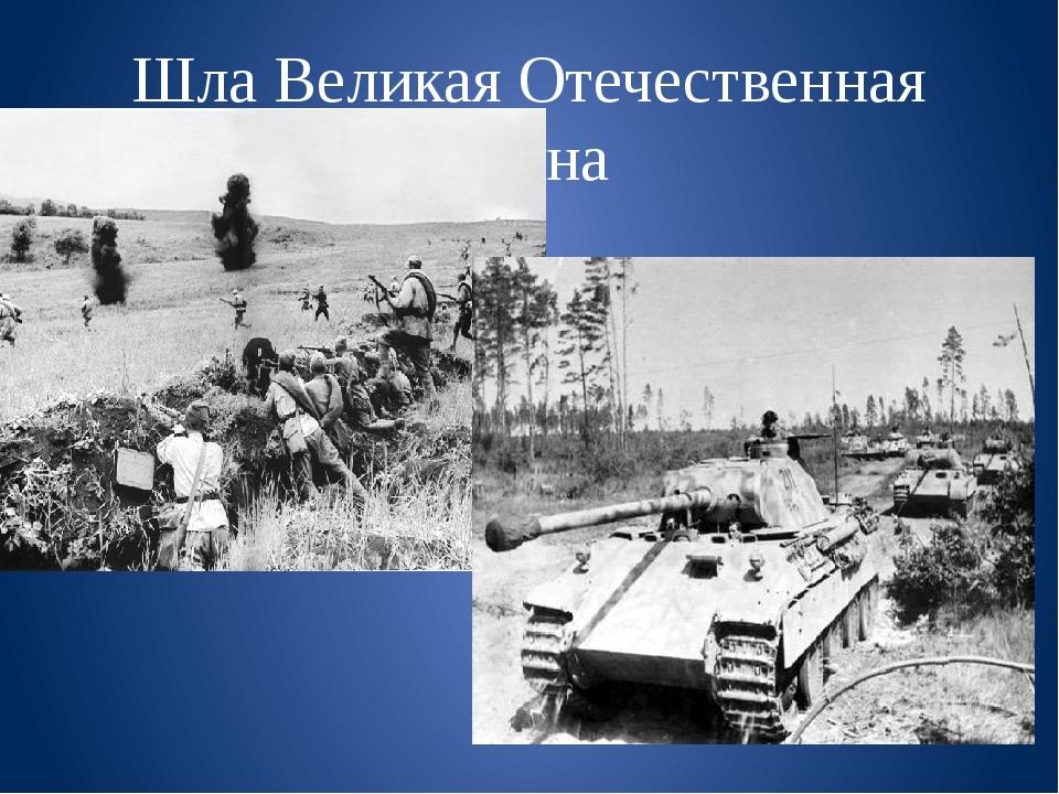Шла Великая Отечественная война