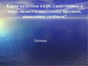 Какое казахское озеро, единственное в мире, является наполовину пресным, нап
