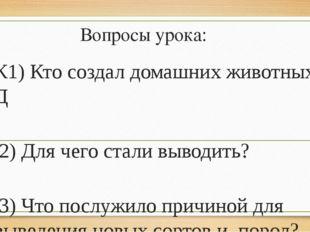 Вопросы урока: К1) Кто создал домашних животных? Д 2) Для чего стали выводить