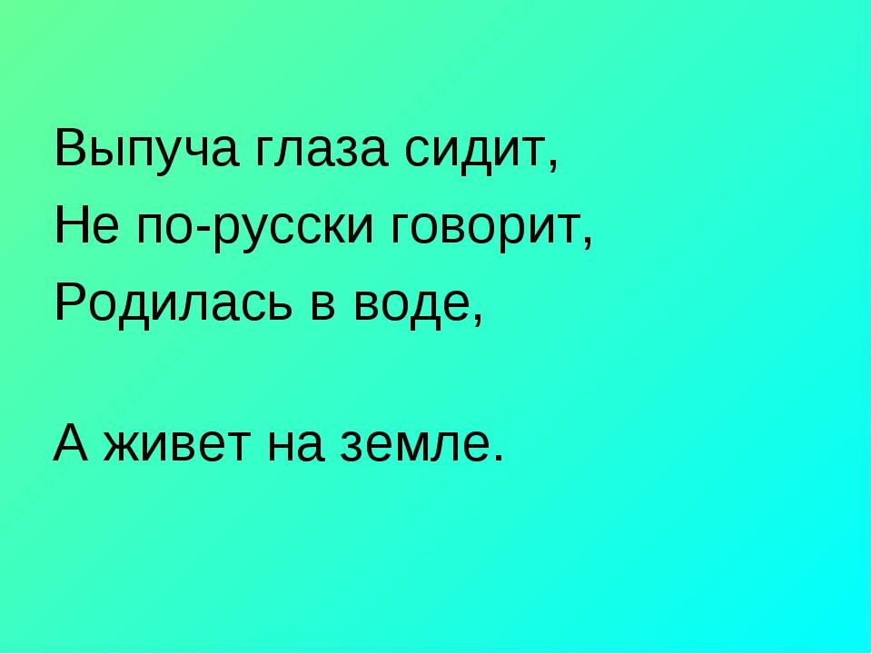 Выпуча глаза сидит, Не по-русски говорит,  Родилась в воде, А живет на земле.