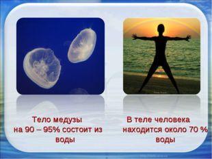Тело медузы на 90 – 95% состоит из воды В теле человека находится около 70 %