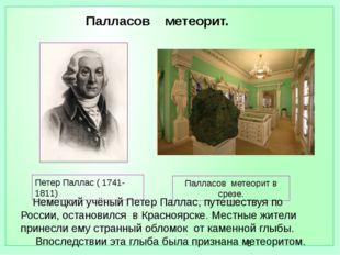 Палласов метеорит в срезе. Петер Паллас ( 1741- 1811) Немецкий учёный Петер