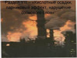 Раздел YIII – «Кислотные осадки, парниковый эффект, нарушение озонового слоя»