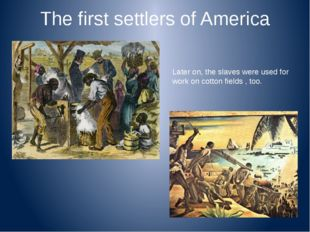 The first settlers of America Later on, the slaves were used for work on cott