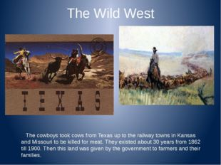 The Wild West The cowboys took cows from Texas up to the railway towns in Kan