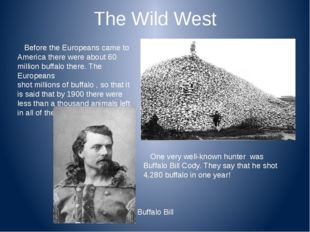 The Wild West Before the Europeans came to America there were about 60 millio