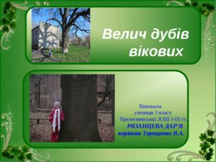 Велич дубів вікових Виконала учениця 3 класу Прелеснянської ЗОШ І-ІІІ ст. РЯ