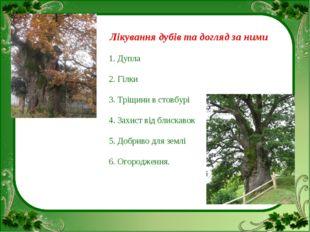 Лікування дубів та догляд за ними 1. Дупла 2. Гілки 3. Тріщини в стовбурі 4.