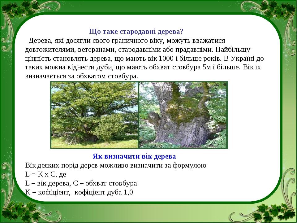 Що таке стародавні дерева? Дерева, які досягли свого граничного віку, можуть...