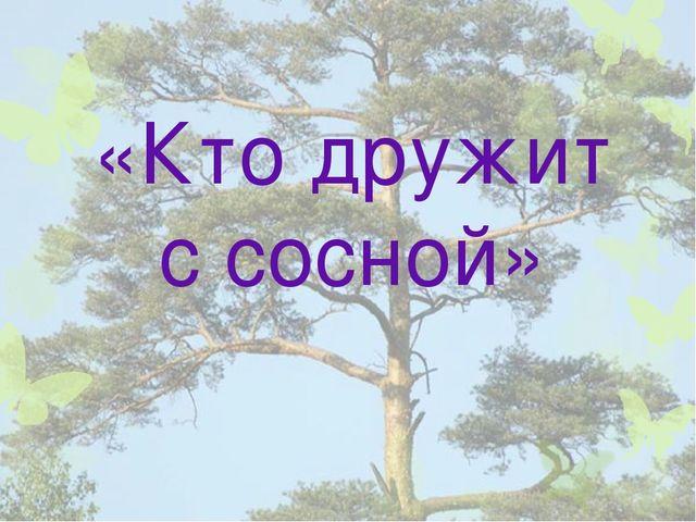 «Кто дружит с сосной»