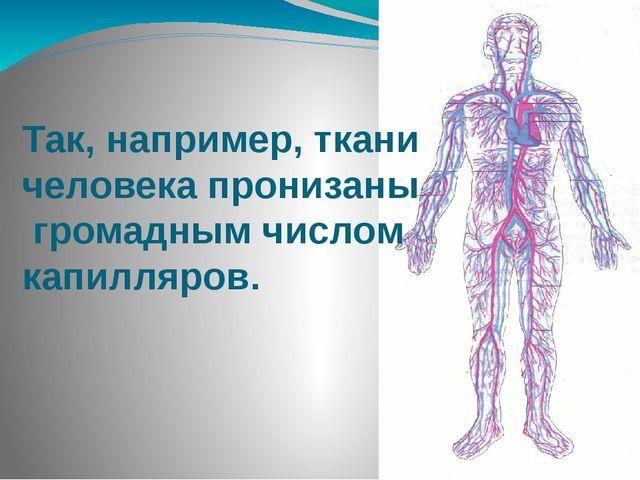 Так, например, ткани человека пронизаны громадным числом капилляров.