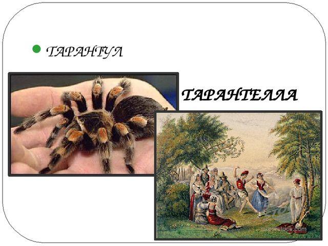 ТАРАНТУЛ ТАРАНТЕЛЛА