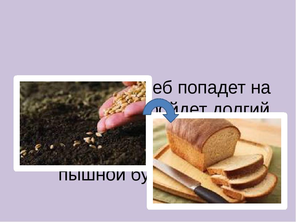 Прежде чем хлеб попадет на наш стол, он пройдет долгий путь созревания от ма...