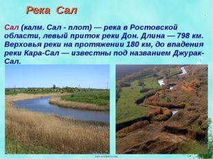 Река Сал Сал (калм. Сал - плот) — река в Ростовской области, левый приток рек