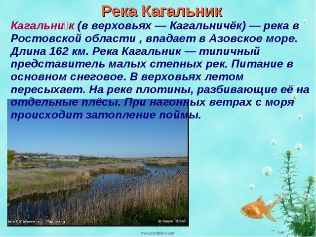 Река Кагальник Кагальни́к (в верховьях — Кагальничёк) — река в Ростовской обл...