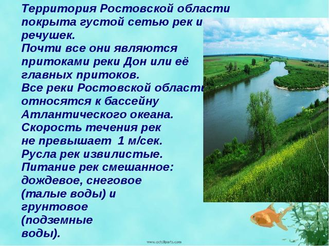 Территория Ростовской области покрыта густой сетью рек и речушек. Почти все о...