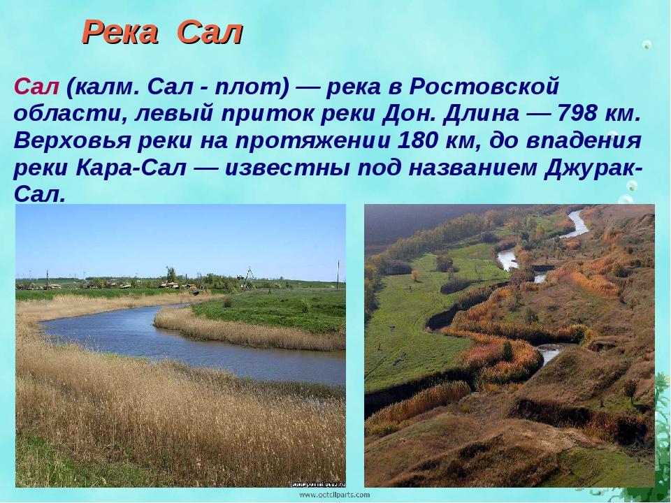 Река Сал Сал (калм. Сал - плот) — река в Ростовской области, левый приток рек...